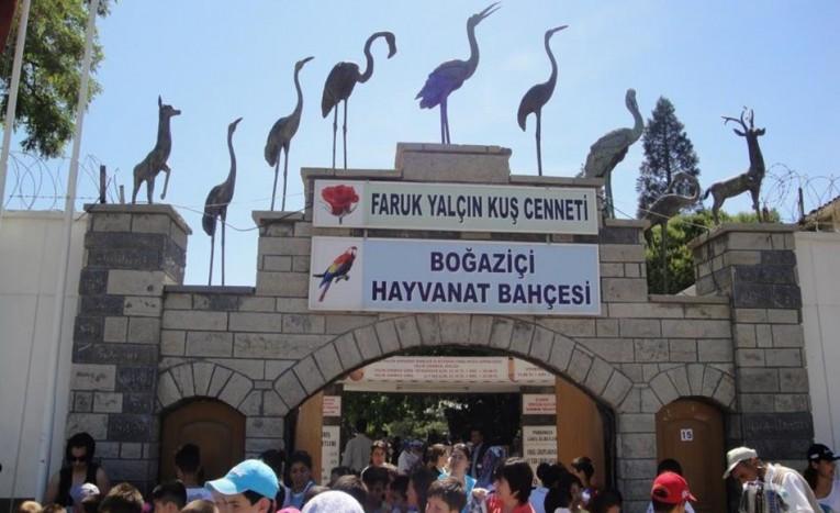 طريقة الذهاب من تقسيم إلى حديقة حيوانات اسطنبول تركيا ادويت